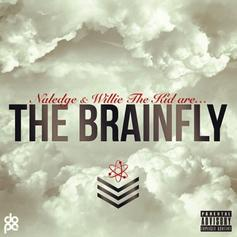 The BrainFly