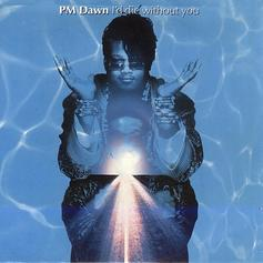 I'd Die Without You (Live P.M. Dawn Cover)