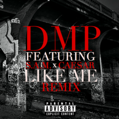 Like Me (Remix)