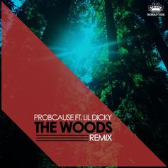 The Woods (Remix)