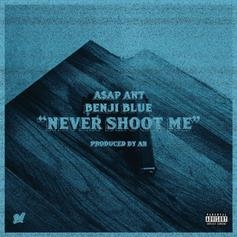 Never Shoot Me