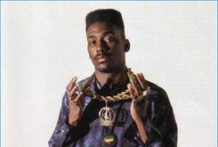 "Old School Music: A Look At Big Daddy Kane's ""Aint No Half-Steppin"""