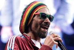 "Snoop Lion/Dogg To Release Reggae Album ""Reincarnated"" With RCA Records"