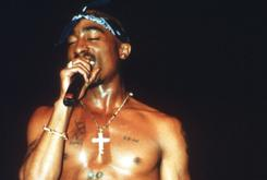 Tupac's Foundation Producing HD Concert Series
