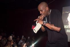 DMX's Erratic Performance At Ruff Ryders Reunion Concerns Fans