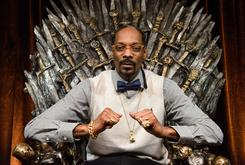 Snoop Dogg, Ice-T, Mary J. Blige And More Getting A Star On Hollywood's Walk Of Fame