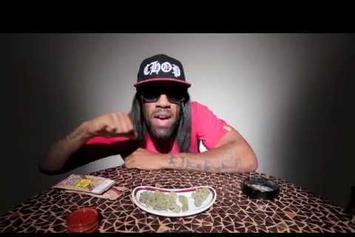 "Redman ""Bud Like You (Remix)"" Video"