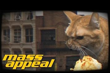 """Run The Jewels Feat. Just Blaze """"Oh My Darling Don't Meow"""" Video"""