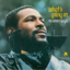 BJ The Chicago Kid & Marvin Gaye - What's Going On (45th Anniversary Duet)